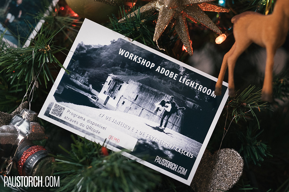 2017-12-untitled-shoot-00212.jpg